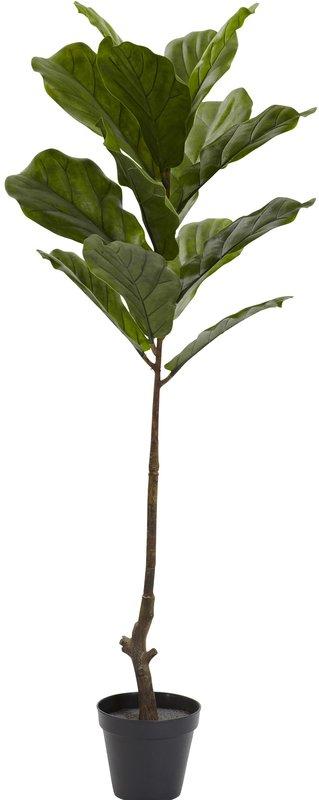 Fiddle+Leaf+Tree+in+Pot